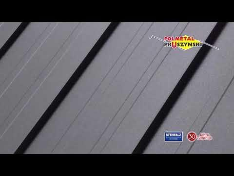 Dachpaneele mit Stehfalz 2
