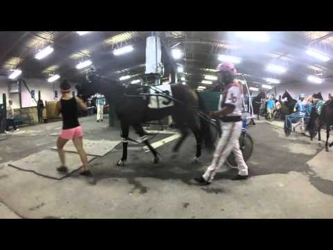 Saratoga Harness Year in Review | 2015