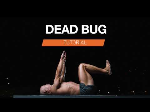 Bodyweight Exercise For Lower Back Pain | Dead Bug Tutorial