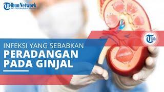 Gagal Ginjal : Gejala, Penyebab dan Mencegah | lifestyleOne.