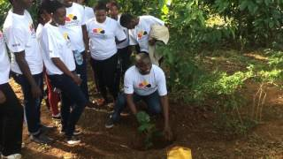 NUCAFE's Joseph Nkandu, Marco & Augusto Dalla Ragione planting Coffee.