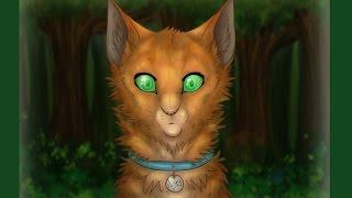 Коты Воители стань диким 7 серия