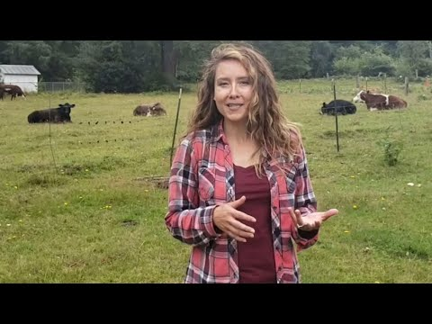 FULL Homestead TOUR [Raising Livestock For A Year's Worth Of Food]