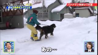 Japanese TV Blooper: An elderly woman's big dog PULLS her in snow