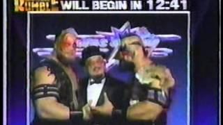 Royal Rumble 1990 Pre-Show