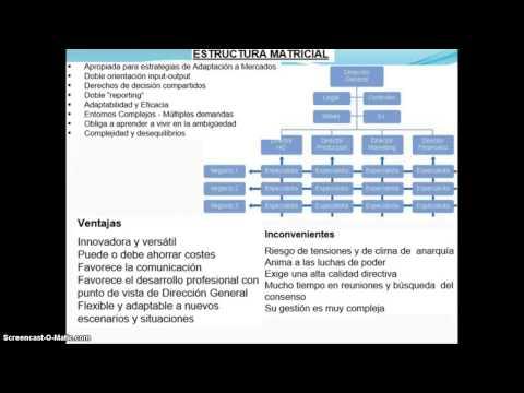 Tipos De Organizacion Estructura Matricial Youtube