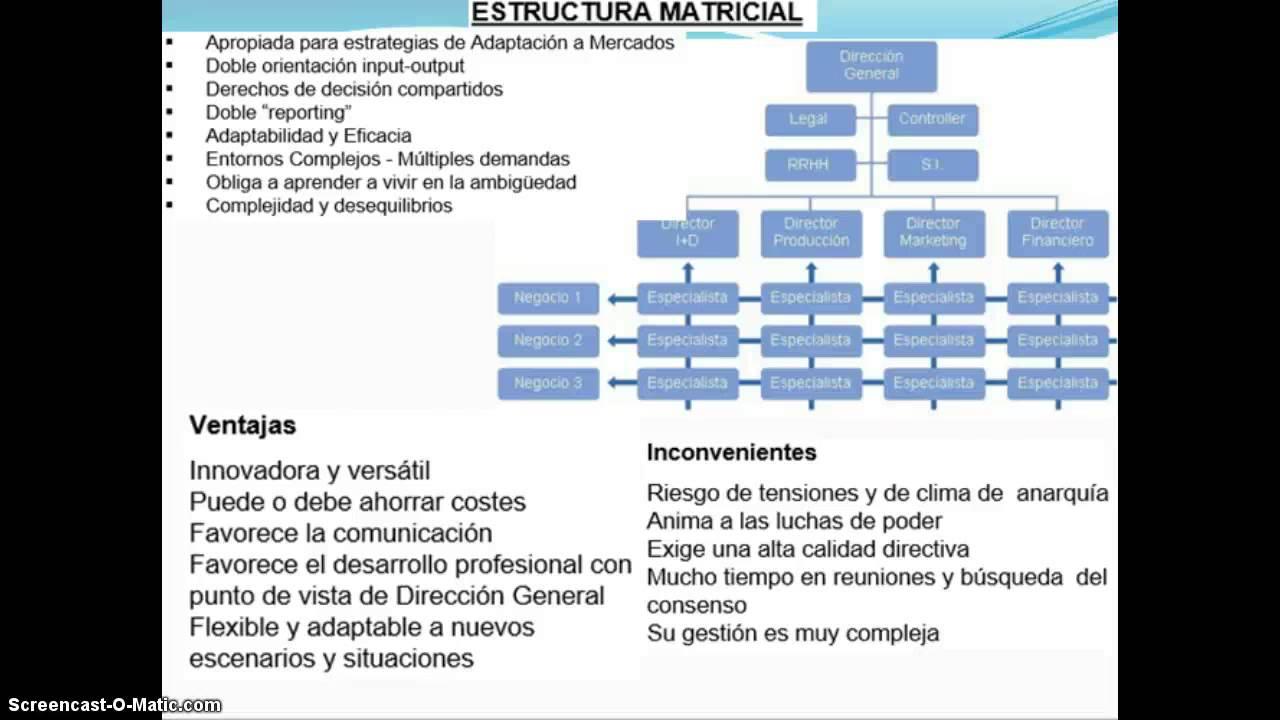 Tipos De Organizacion Estructura Matricial