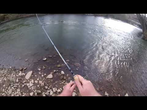 Trout Fishing At Bald Eagle Creek