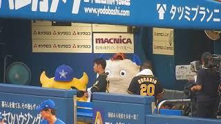 阪神タイガース2018/バートアンドチャピーに占領される?阪神ベンチ(2018.08.12)
