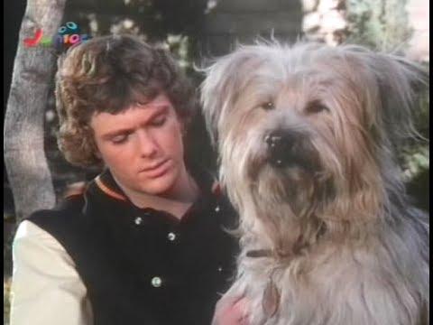 Here's Boomer - INTRO (Serie Tv) (1980 - 1982)