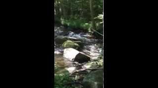 Samodiva Creek