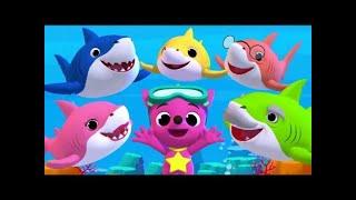 Con Heo Đất - Bống Bống Bang Bang - Baby Shark | Liên Khúc Nhạc Thiếu Nhi