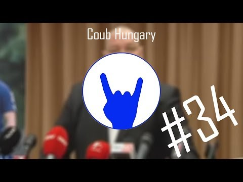 Félig Magyar Coub Compilation #34