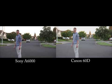 Sony A6000 Vs. Canon 60D Video Test