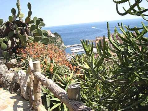 Monaco - Garden Exotique Tour