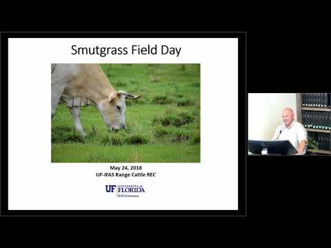 Smutgrass Management In Pastures - Program Introduction With Brent Sellers