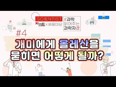 [과학 읽어주는 과학자들, Scientist] #4 개미에게 올레산을 묻히면 어떻게 될까?