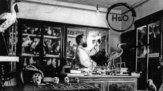 Gambar cover HsO - Nemico o salvatore