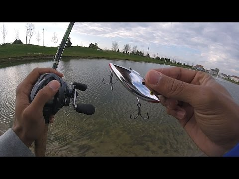 Chrome Rattle Trappin' !(Pond Fishing Ep.2)