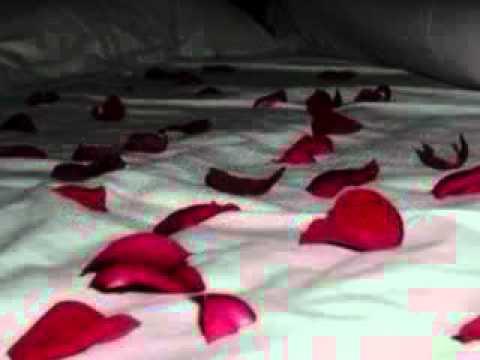 Bed of Roses-Hinder Lyrics