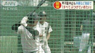 高校野球 長崎・沖縄で県独自の大会開催を決定(20/05/23)