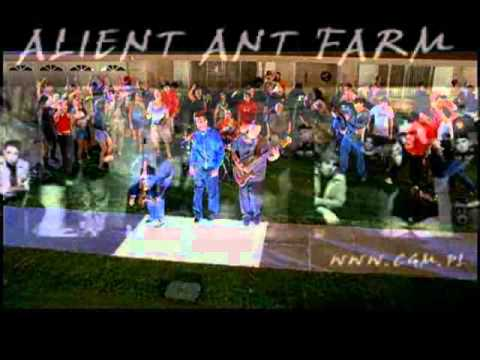 Death day AAF.wmv - YouTube
