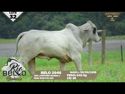 LOTE 32   BELO 2946