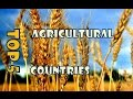 Top 5 most advanced countries in agriculture