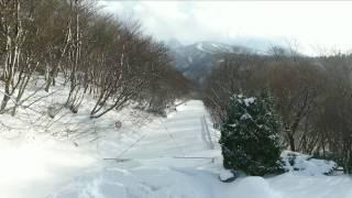 我が中国地方も大雪だと言うので、チョイと南の瀬戸内海から北上して鳥...