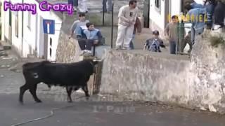 Funny bullfighting festival