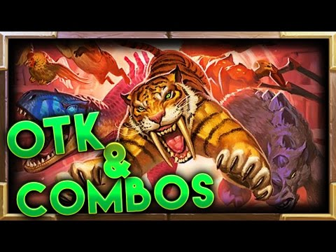 Hearthstone | Best OTK's and Combos