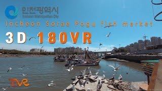 인천 소래포구 180 3D VR [Incheon Sorae Pogu fish market 180 3D VR]