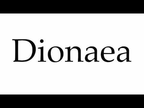 How to Pronounce Dionaea