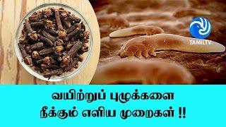 வயிற்றுப் புழுக்களை நீக்கும் எளிய முறைகள் !! - Tamil TV