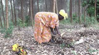 Women negotiating land rights in Uganda