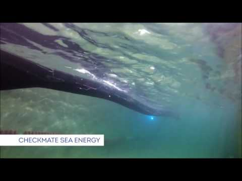 Novel Wave Energy Converter Stage 1 projects | Wave Energy Scotland