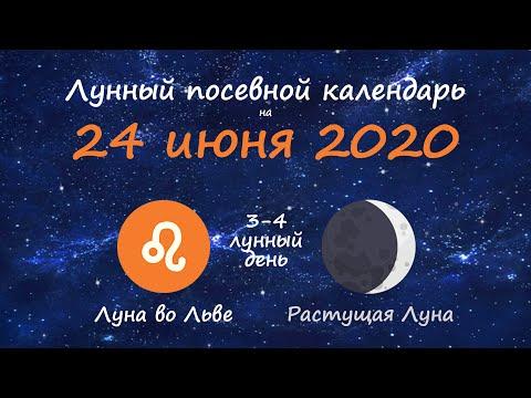[24 июня 2020] Лунный посевной календарь огородника-садовода