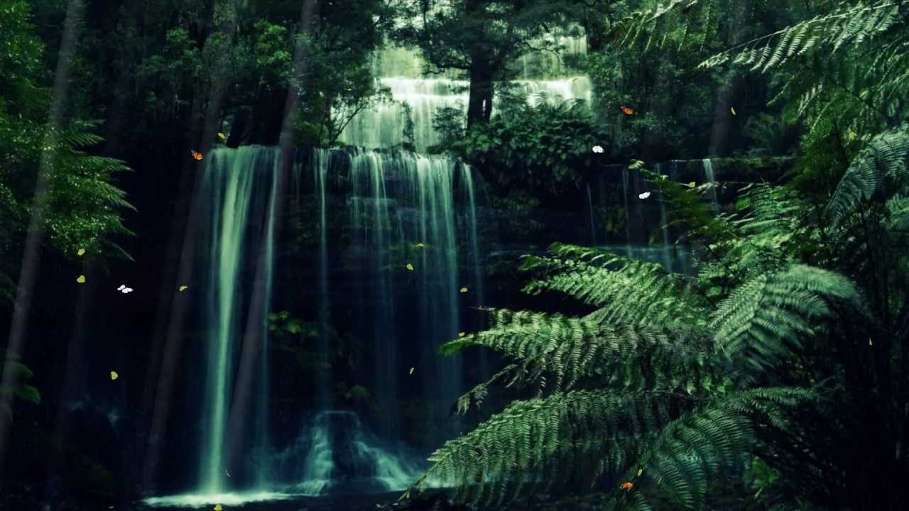 3d Landescape Mural Wallpaper Mystic Forest Screensaver Http Www Screensavergift Com
