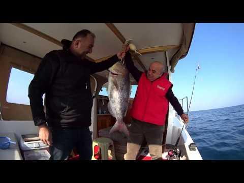 Kuşadası Balık Avı 10 kg Sinarit Avı Yaşar Yaşa