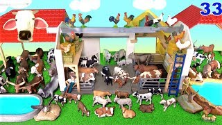 Farm Animals - 52 Cows - Learn Animal Names - Educational Toys for Kids Children 33