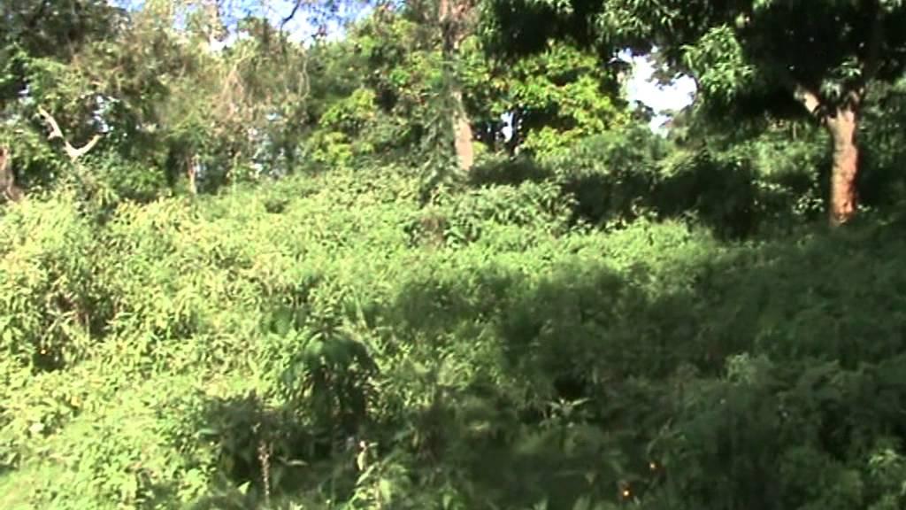 Download Gem Kathomo , Siaya County , 2012