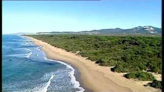 Le Spiagge al sud di San Vincenzo
