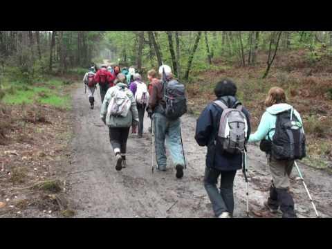 Randonnées pédestres en forêt de Fontainebleau avec Pascren94