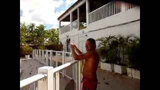Guadeloupe, Ste-Anne...de L'hotel Le Rotabas au plage...March 2011