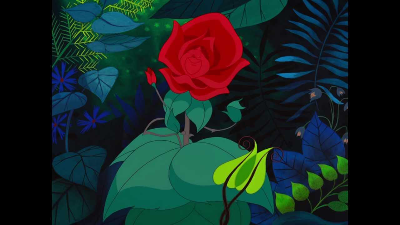 Alice Au Pays Des Merveilles Un Matin De Mai Fleuri Hd Youtube