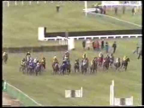 1985 Daily Express Triumph Hurdle