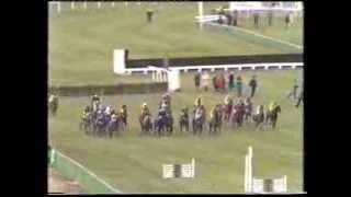 1985 Daily Express Triumph Hurdle