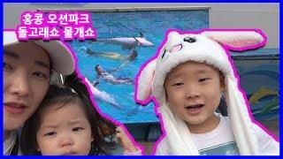 홍콩 오션파크에서 돌고래쇼와물개쇼 보기 홍콩여행지 추천…