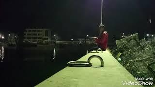 【アジング釣り調査part3 淡路島育波漁港 孤高のライトゲーマーが行く~】なんちゃってスプリット実釣の巻