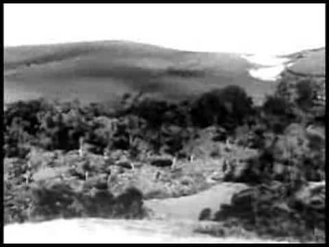Africa Speaks! (1930) JUNGLE ADVENTURE